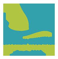 petit logo pour dcme vert footer